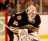 Tim Thomas Boston Bruins Stock Photo