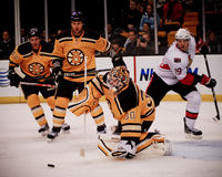 Tim Thomas Boston Bruins Lizenzfreie Stockbilder
