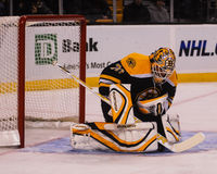 Tim Thomas, Boston Bruins Lizenzfreie Stockfotografie