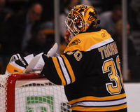 Tim Thomas, Boston Bruins Lizenzfreie Stockbilder