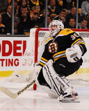 Tim Thomas, Boston Bruins Fotografia Stock Libera da Diritti