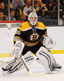 Tim Thomas, Boston Bruins Imagem de Stock