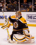 Tim Thomas, boston bruins Obrazy Royalty Free