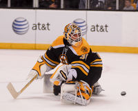 Tim Thomas, boston bruins Zdjęcia Stock
