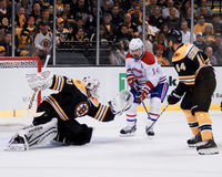 Tim Thomas Boston Bruins Royaltyfri Foto