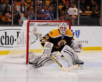 Tim Thomas, Boston Bruins Royalty-vrije Stock Afbeeldingen