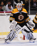 Tim Thomas, Boston Bruins Stockbild