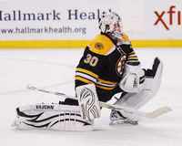 Tim Thomas, Boston Bruins Lizenzfreies Stockbild