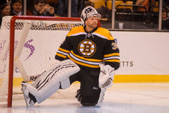 Tim Thomas, Boston Bruins Lizenzfreies Stockfoto