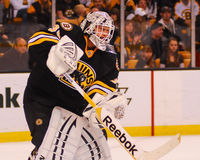 Tim Thomas, Boston Bruins Images libres de droits