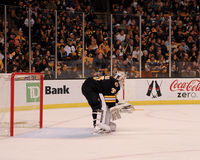 Tim Thomas, Boston Bruins Photos stock