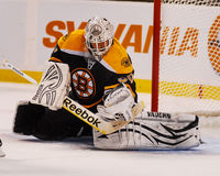 Tim Thomas Boston Bruins Royalty Free Stock Image