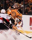 Tim Thomas Boston Bruins. Royalty Free Stock Image