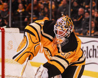 Tim Thomas Boston Bruins. Stock Image
