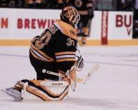 Tim Thomas, Boston Bruins Royalty Free Stock Photos