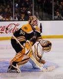 Tim Thomas, Boston Bruins Royalty Free Stock Images