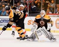 Tim Thomas y Chara de Zdeno, Boston Bruins Imagen de archivo libre de regalías
