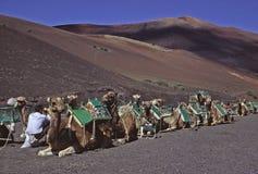 Timanfaya à Lanzarote Photographie stock libre de droits