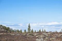 timanfaya för 2011 canarian öjuni lanzarote nationalpark Arkivfoton