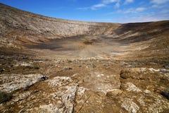 Timanfaya  in los volcanes  spain plant flower bush Royalty Free Stock Image