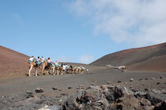 Timanfaya national park Royalty Free Stock Images