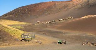 Timanfaya National Parque, Lanzarote, Spain - 02.15.2019: Camel tour in Montanas del Fuego royalty free stock images