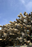 Timber Stock Images