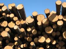 Timber Stock Photos