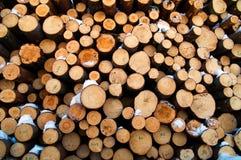 Timber Royalty Free Stock Photo