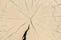 timber Image libre de droits