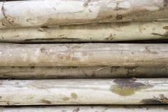 timber Image stock
