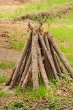 timber Images stock