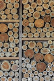 Timber background Royalty Free Stock Photography