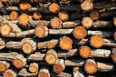 Timber background. Stack of timber stock photography
