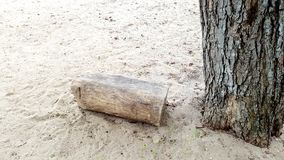 Timber on the beach Stock Photos