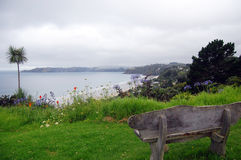 Timber bench sea bay view palm Royalty Free Stock Images