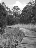 Timber board walk along a rural creek Stock Images
