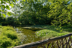 Timber bridge over weedy riverlet in sunny summer afternoon Royalty Free Stock Images