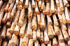Timber for construction Royalty Free Stock Photos