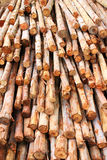 Timber for construction Stock Image