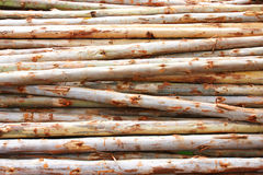 Timber for construction Stock Photography
