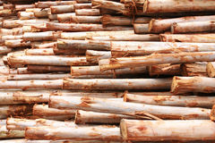 Timber for construction Royalty Free Stock Image