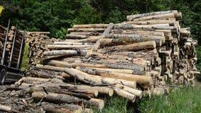 Timber crane load logs Royalty Free Stock Photos