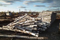 Timber factory Stock Image