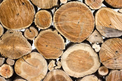 Timber. Floor background element for design Royalty Free Stock Photography