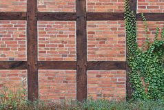 Timber-framed red brick wall partly covered with ivy Stock Photography