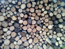 Timber. Full frame photo of timber Royalty Free Stock Image