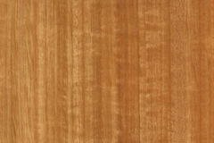 Timber grain Royalty Free Stock Image