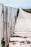 Timber groynes на пляже на Северном море Стоковое Изображение