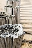 Timber groynes on the beach  at the north sea Royalty Free Stock Photo